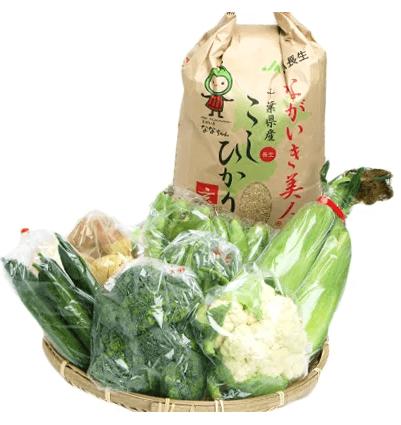 ふるさと納税 季節の野菜と玄米